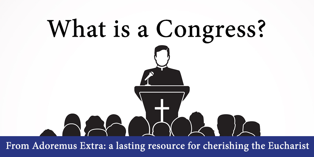 What is a Congress?